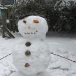 snowcracoke!