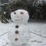 snowman on ocracoke island