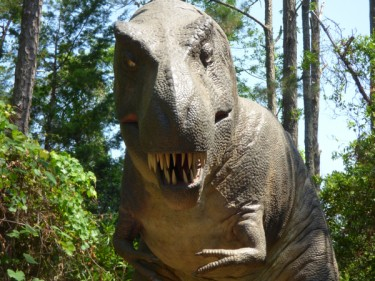 Saying goodbye.The animatronic T. Rex is the last thing visitors see before leaving the Tyrannosaurus Trek.