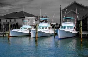 Ernie Foster's Albatross fleet in port. Photo, Albatross Fleet.