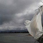 obx ban on plastic bags becomes model for U.S.