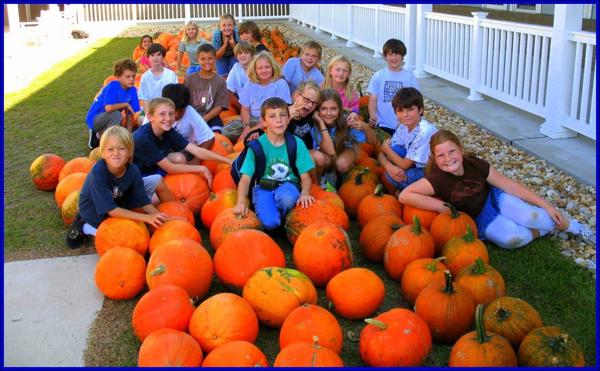 HOBNHES pumpkin fair 1