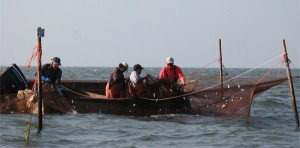 Fishermen hauling in a net at Day at the Docks.