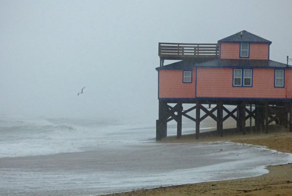 Kitty Hawk beach just after high tide, Wednesday 11/26. Graininess of the image is the rain.