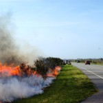 bodie island burn coming up soon