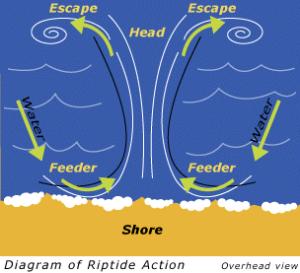 rip tide chart