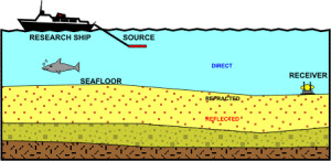 Diagram of seismic surveying. Marine mammals and fish are often affected by the process.