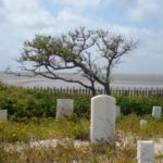 you can help save the salvo cemetery!