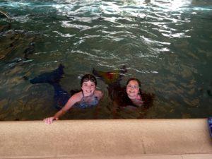 mermaids in the pool