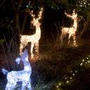 winter lights are obx winter magic!