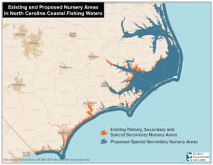 Map showing extent of shrimp nurseries in NC waters.