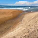 shelly island is shelly sandbar…for now