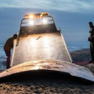 weird science comes to hatteras island